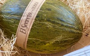 tipos de melones